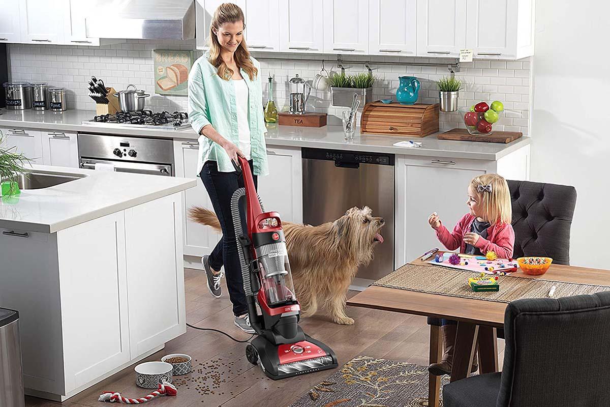 pet vacuum