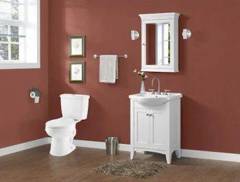 AquaSource Henshaw White WaterSense Dual Flush 2-Piece Toilet
