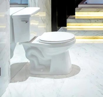 AquaSource High-Efficiency White WaterSense 2-Piece Toilet
